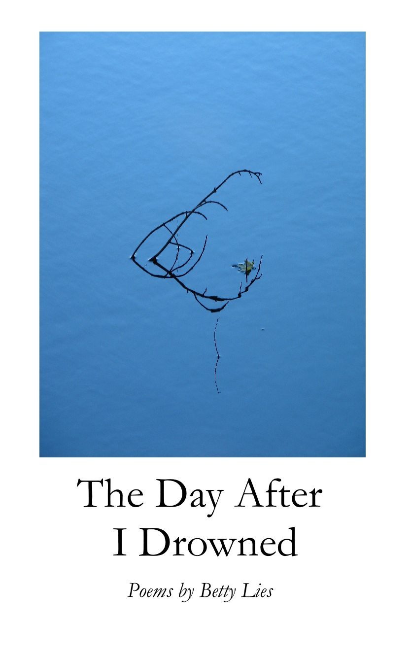 Betty Lies' The Day After I Drowned is a book of yearning, of searching for ...